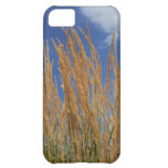 Abstract Wheat iPhone 5C Cover