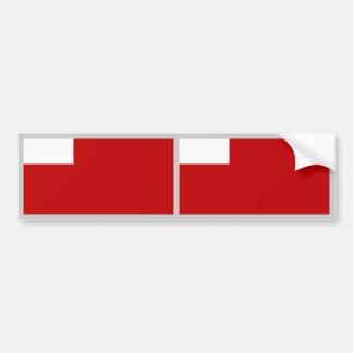 Abu Dhabi Flag Bumper Sticker