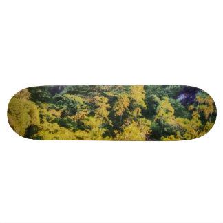 Abundant greenery skate board