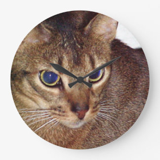 Abyssinian 2.png wall clock