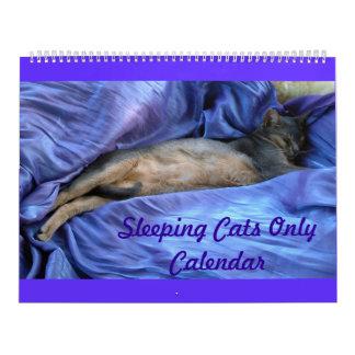 Abyssinian Sleeping Cats Calendar 2015