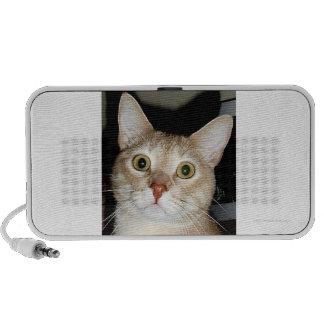 ABYSSYNIAN CAT SPEAKER SYSTEM