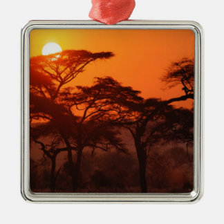 Acacia forest silhouetted at sunset, Tarangire Christmas Ornament
