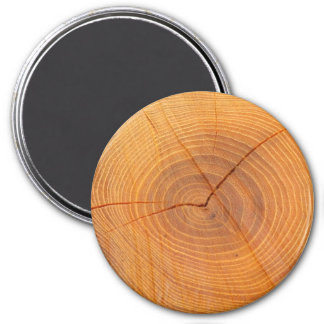 Acacia Tree Cross Section Large Round Magnet