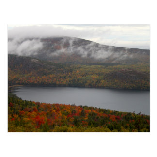 Acadia Fall Trees Postcard