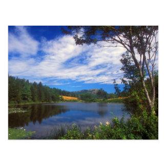 Acadia Long Pond View Postcard