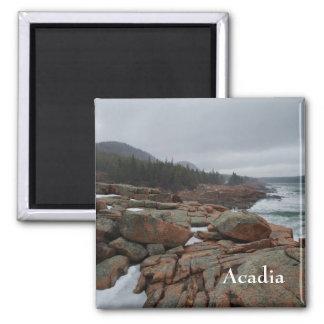 Acadia Magnet - 1