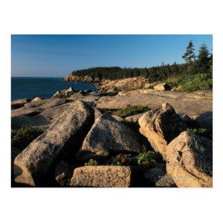 Acadia National Park , Maine 2 Postcard