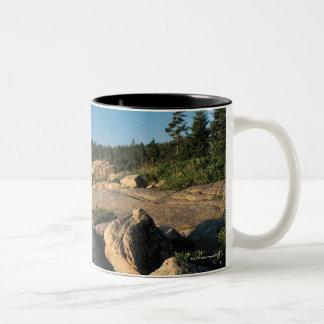 Acadia National Park , Maine 2 Two-Tone Coffee Mug