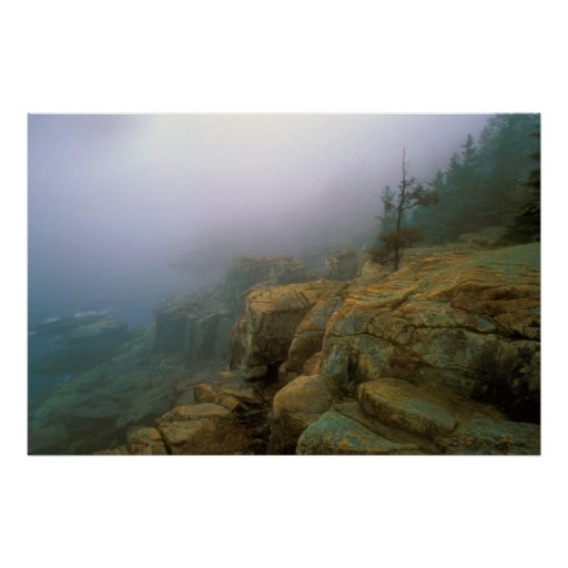 Acadia National Park Otter Cliffs Poster