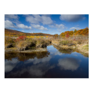 Acadia NP: autumn colors, reflections Postcard