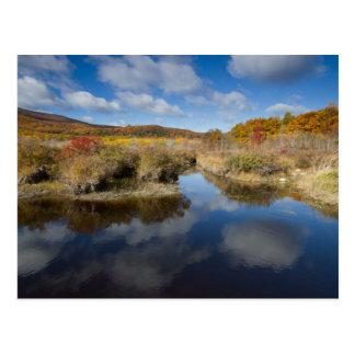 Acadia NP: autumn colors, reflections Postcard