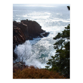 Acadia Postcard - 5