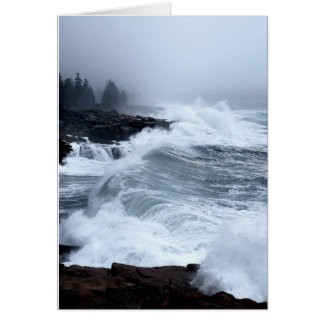 Acadia Surf Notecard - 2