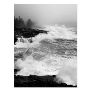 Acadia Surf Postcard - 3