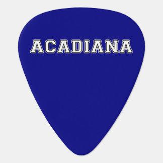 Acadiana Guitar Pick