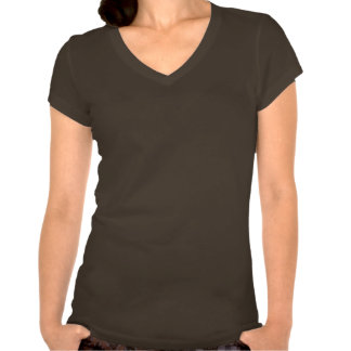 ACART - Safe Haven | Turquoise and Brown Logo T-shirts
