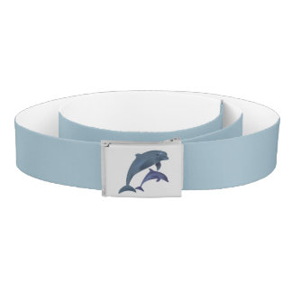 accessories belt