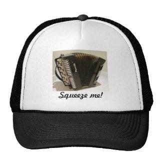 Accordion Squeezebox hat