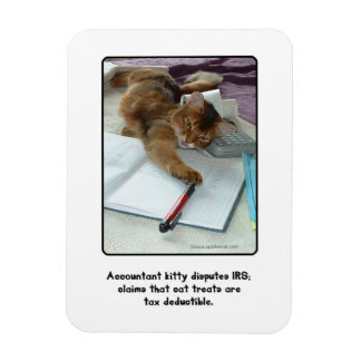 Accountant Kitty Magnet