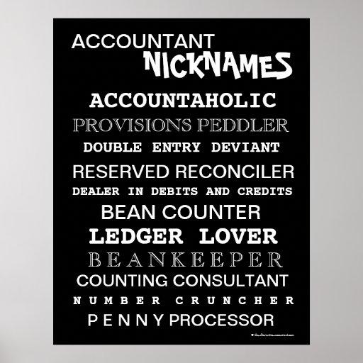 Accountant Nicknames Poster