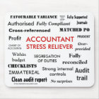 Accountant Stress Reliever - Stress Manager Mouse Mat