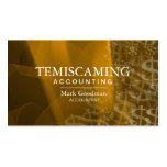 Accounting Business Card Gold White Dollar Signs