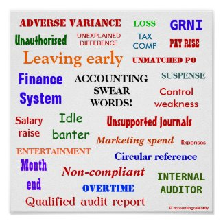 ACCOUNTING SWEAR WORDS! Multicolour