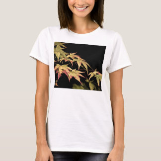 Acer Ladies T-Shirt