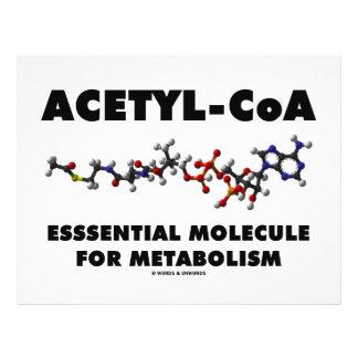 Acetyl-CoA Essential Molecule For Metabolism 21.5 Cm X 28 Cm Flyer