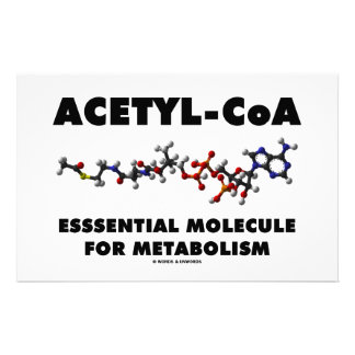 Acetyl-CoA Essential Molecule For Metabolism Customized Stationery