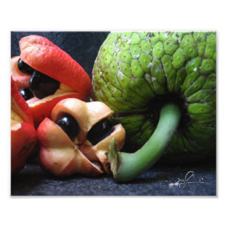 Ackee and Breadfruit Photo Print