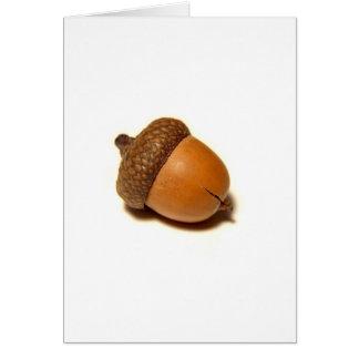 Acorn Cards