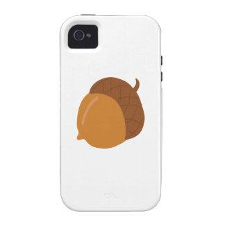 Acorn iPhone 4/4S Cover