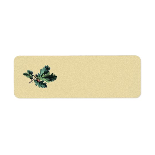 acorn oak vintage return address label