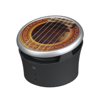 Acoustic Guitar Detail Speaker