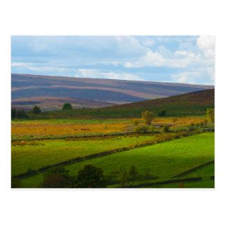Across the Moor Postcard