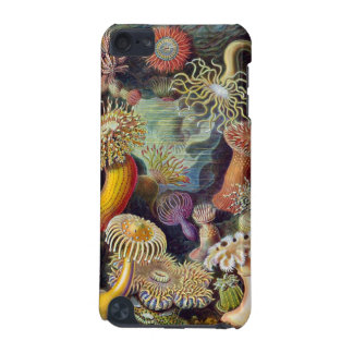 Actiniaesa Sea Creatures iPod iPod Touch (5th Generation) Covers