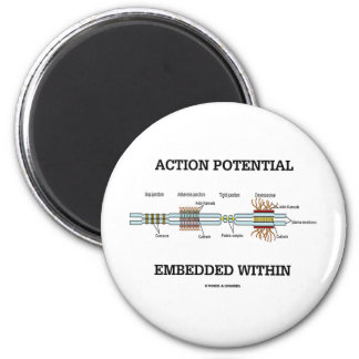 Action Potential Embedded Within (Cell Junctions) 6 Cm Round Magnet
