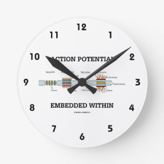 Action Potential Embedded Within (Cell Junctions) Clock