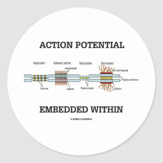 Action Potential Embedded Within (Cell Junctions) Round Stickers