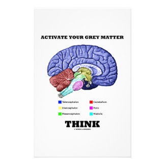 Activate Your Grey Matter Think Anatomical Brain Customized Stationery