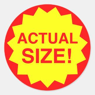 Actual size! classic round sticker
