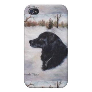 Actune Dog Portrait IPhone 4 Case