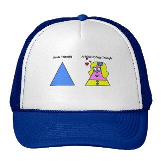 Acute Triangle A Really Cute Triangle Hats