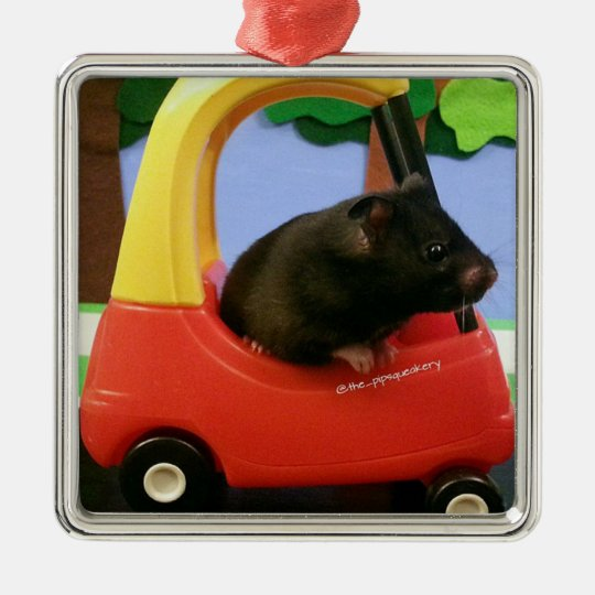 Ada Learns to Drive! Christmas Ornament