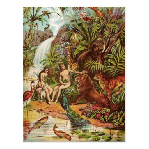 Adam And Eve In The Garden Postcards