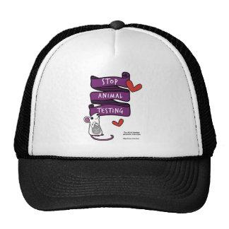 adav society - cap