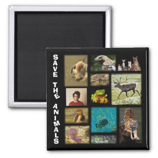 """Add A Pic of You """"Save The Animals"""" Square Magnet"""
