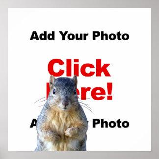 Add A Squirrel Custom Poster